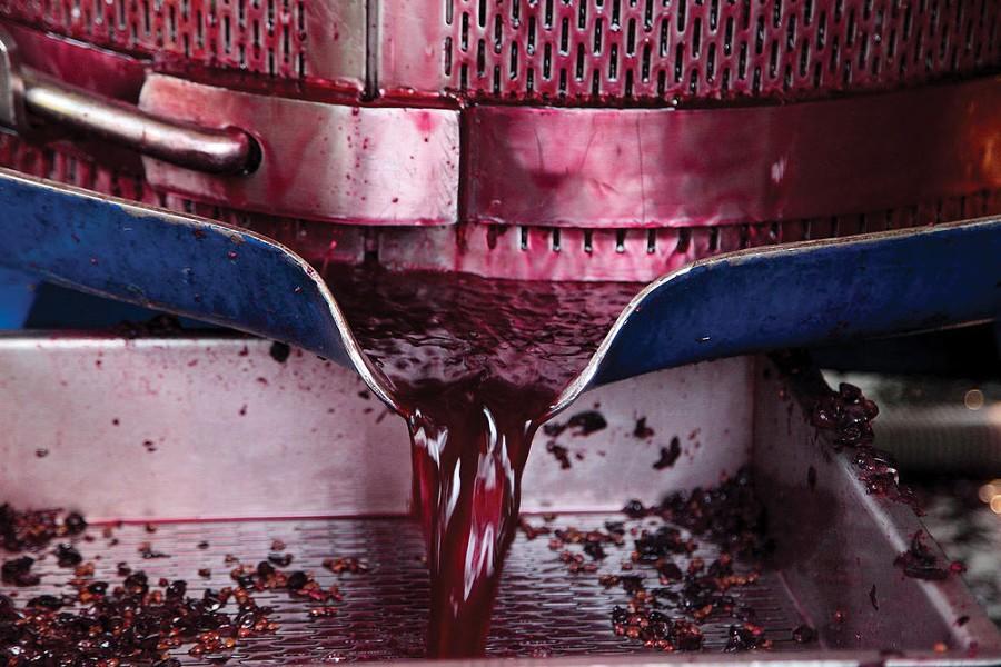 art-of-biz_milea-press-juice.jpg