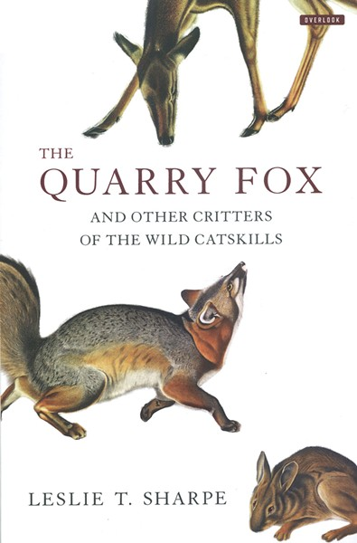 the-quarry-fox_sharpe.jpg