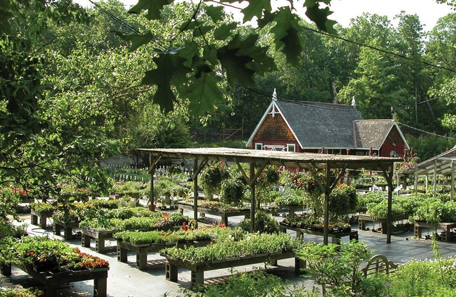 aob_botanical-garden_1.jpg