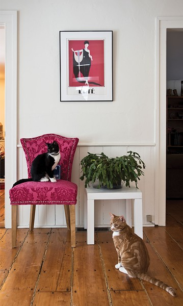 "A high back chair is a favorite of the couple's two cats. After teaching writing for over thirty years, Callan published The Writer's Toolkit. ""Our personality comes out in the pen,"" she explains. ""The right word or the right phrase can bring order to the chaos."" - DEBORAH DEGRAFFENREID"
