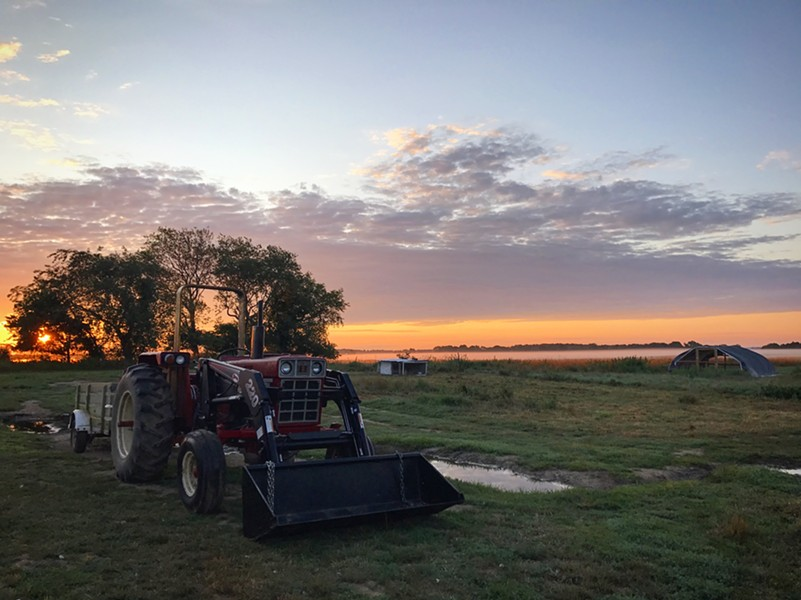 sunrise_serenity_alison_delaney_daily_life_on_the_farm.jpg