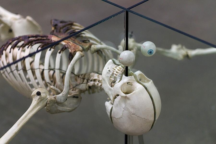 """""""Death is Irrelevant"""" (detail shot), Damien Hirst"""