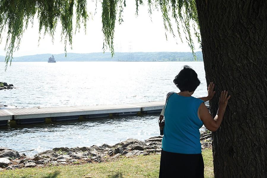 Tree worship on the Hudson waterfront. - PHOTO: JOHN GARAY