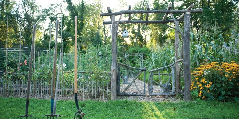 How to Grow a Victory Garden
