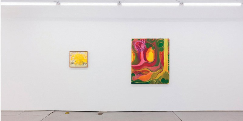 "Dreams & Daydreams: ""Lois Dodd and Shara Hughes"" At Parts & Labor Beacon"