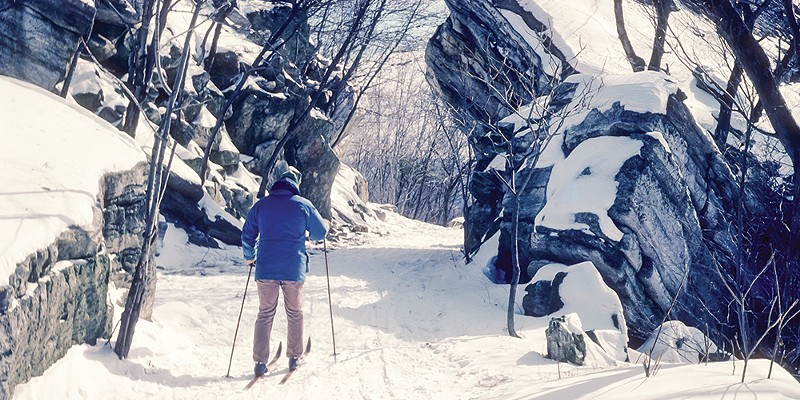 Cross-Country Skiing for the Novice