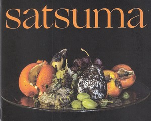 Album Review: Life in a Blender | Satsuma