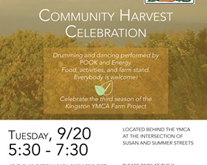 Harvest at the Kingston YMCA Farm Project