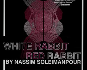 """""""White Rabbit Red Rabbit"""" at the Denizen is a Cold Reading Social Experiment (2)"""