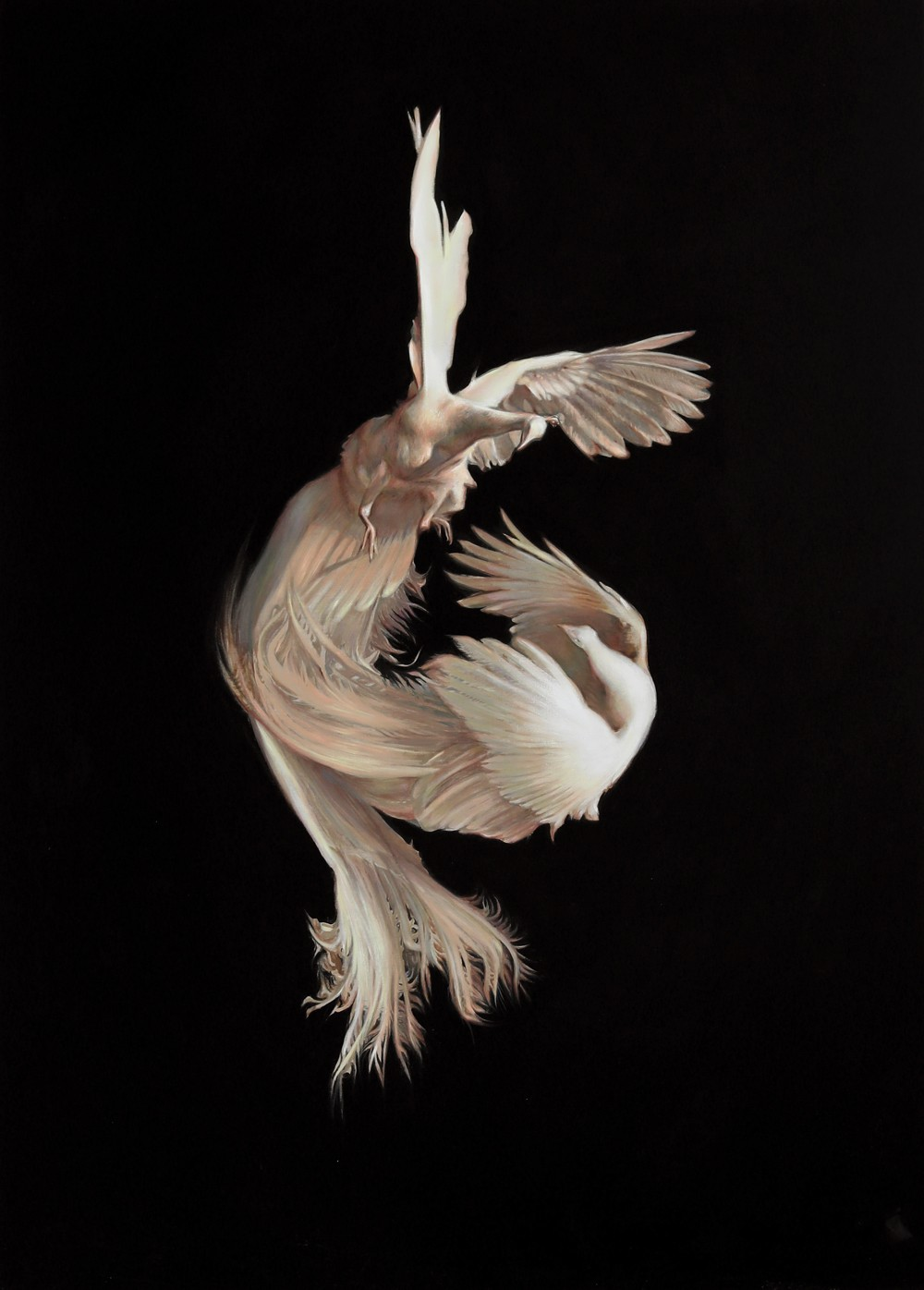 """White Male Peacocks, Lily Morris, oil on linen, 67"""" x 48"""", 2020"""