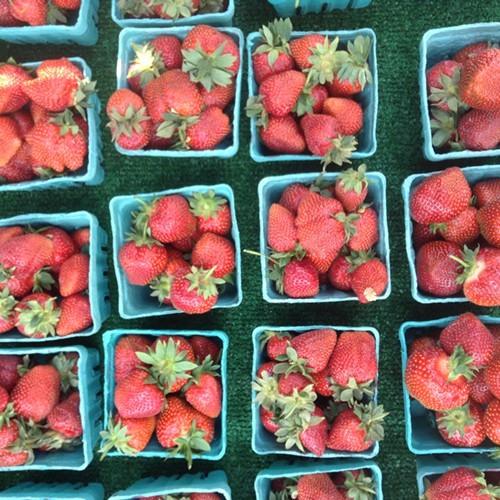 Strawberries_Eat_Local_NY.JPG