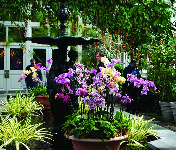 Public gardens show us ways of putting plants together for best ornamental effect. - LARRY DECKER