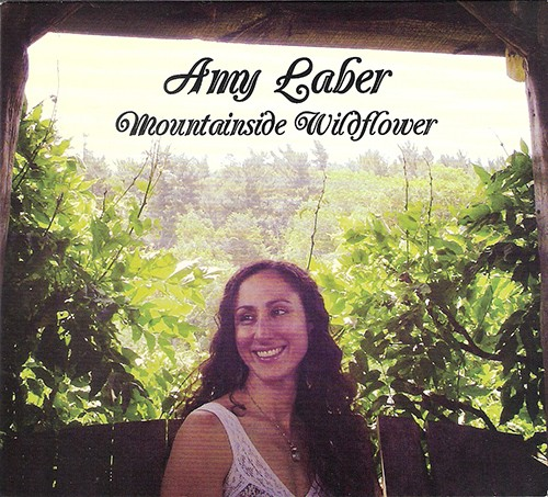 cd_amy_laber.jpg