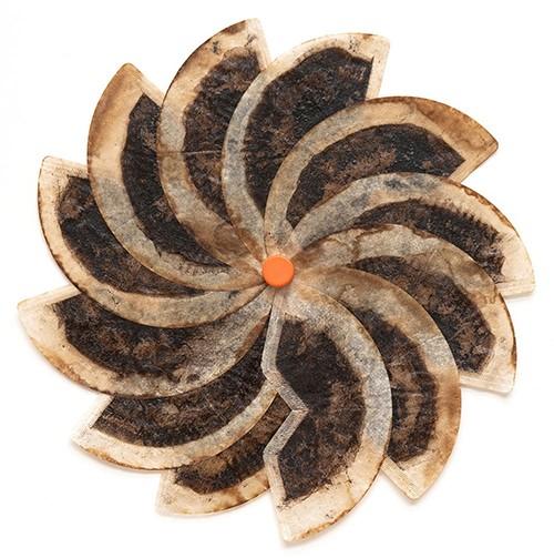 """Burst"" by Linda Stillman. Used coffee filters, acrylic medium, plastic cap. 9.25 x 19.25 x .5 inches, 2008-2016."