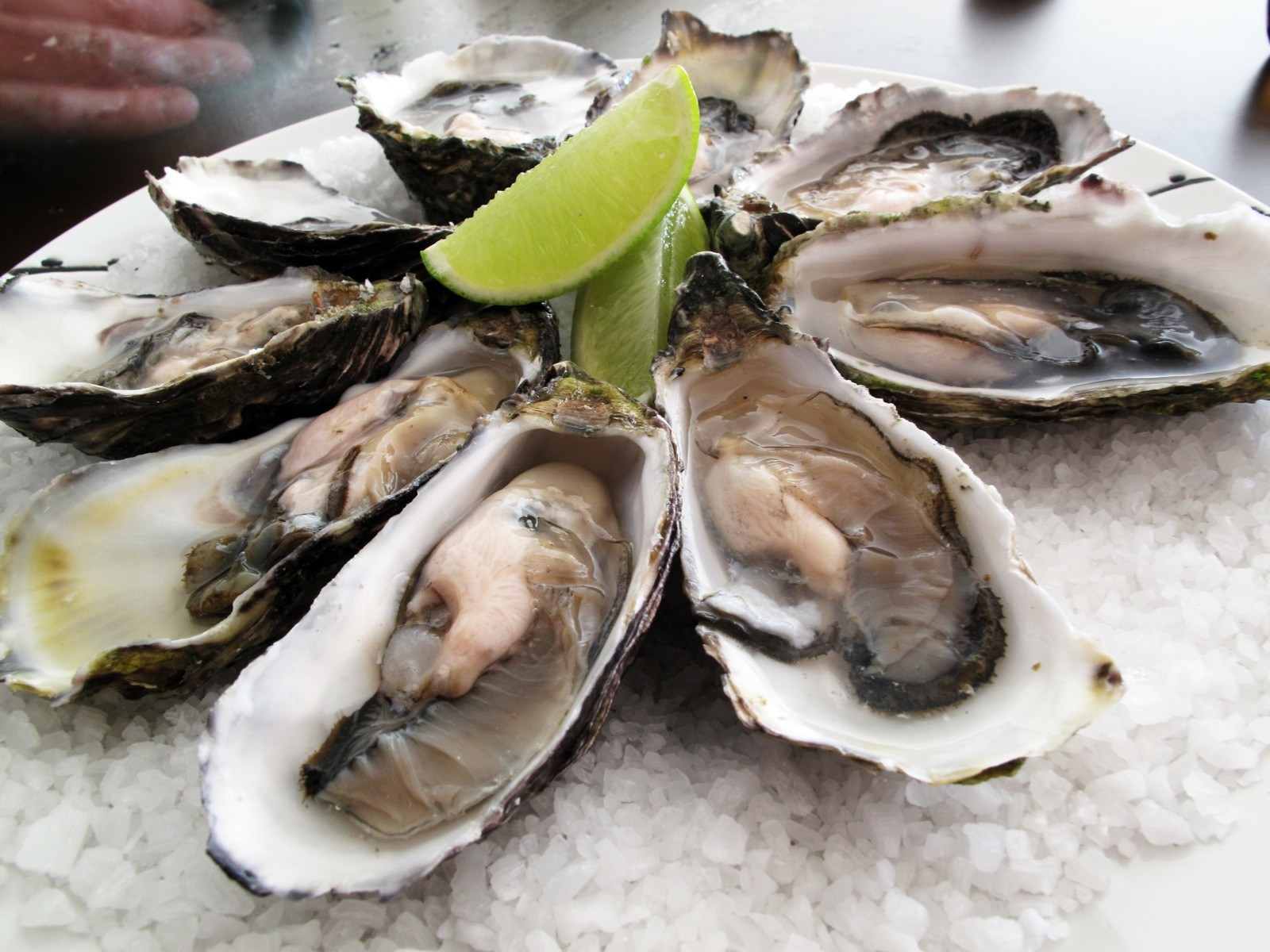 Eat Oysters In The Hudson Valley