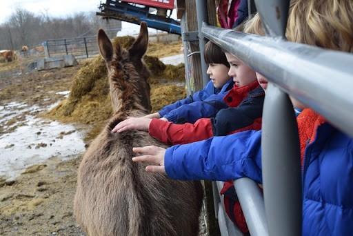 poughkeepsie_day_school_farm_learning5.jpg