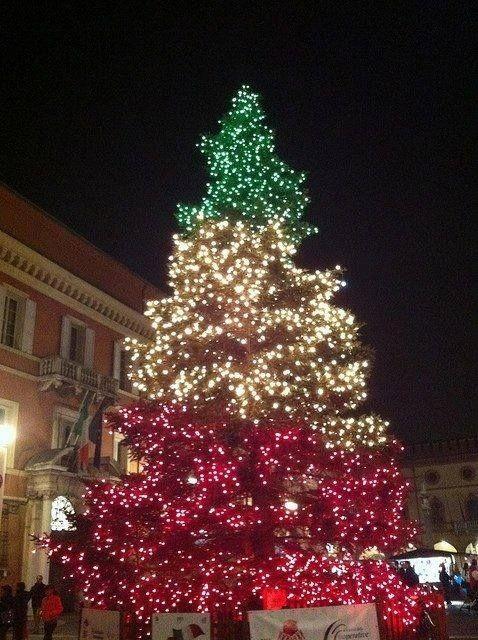 italian_xmas_tree.jpg