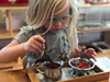 Student-Led Learning at Montgomery Montessori (2)