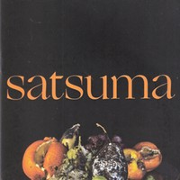 Album Review: Life in a Blender | Satsuma