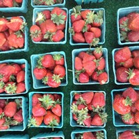 Bringing Local Food to Families in Need