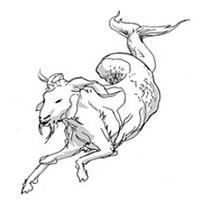 Capricorn for November 2015
