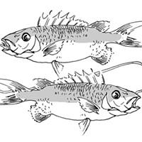 Pisces for February 2016