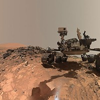 Mars Retrograde: What Do You Want?