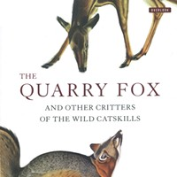 Book Review: The Quarry Fox:And Other Critters of the Wild Catskills; The Moth Snowstorm: Nature and Joy