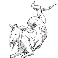 Capricorn for May 2017