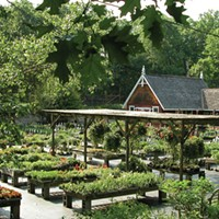 Art of Business: Northern Dutchess Botanical Gardens