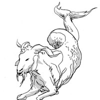 Capricorn for September 2017