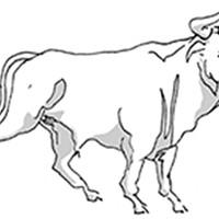 Taurus for September 2017