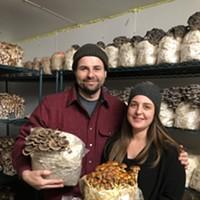 Tivoli Mushroom Supply Company