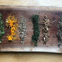 7 Hudson Valley Apothecaries Offering Herbal Remedies & Know-How