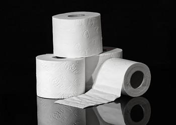 A Toilet Paper Tale