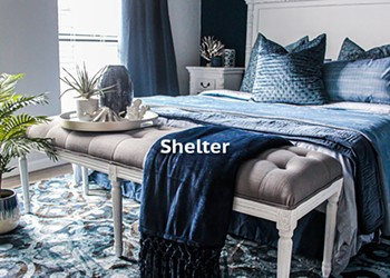 Shelter Winners