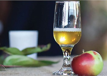 Hudson Valley Cider & Cheese Tasting and Market