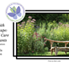 Working with Your Landscape: Planting & Care of Native Plants @