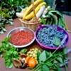 Activating Public Spaces to Grow Food @