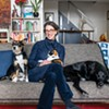 Gone to the Dogs: Two Writers Design Pup-Friendly Abode in the Woods