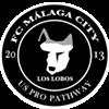 FC Malaga City Vs. Western Mass Pioneers @ Malaga City NY Field
