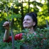 Wild Harvest: Sharing Mother Nature's Bounty - Edible & Medicinal Plant Walk with Dina Falconi at Opus 40! @