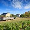 Great Pumpkin Festival @ DuBois Farms