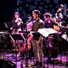 Contemporaneous Returns to Hudson Valley Roots