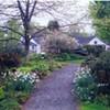 Landscape Design I @ Berkshire Botanical Garden