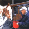 Suffern Equine Sessions @ Ramapo Equestrian Center