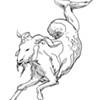 Capricorn for June 2017