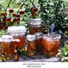 Just Like My Nan Made: Apple Mint Jam Workshop @ Clermont State Historic Site