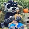 Bark at the Park @ Dutchess Stadium