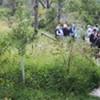 Hudson Valley Ramble Walk @ Vassar Barns in the Vassar Farm and Ecological Preserve